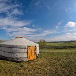 Bilan de 10 jours de voyage en Mongolie