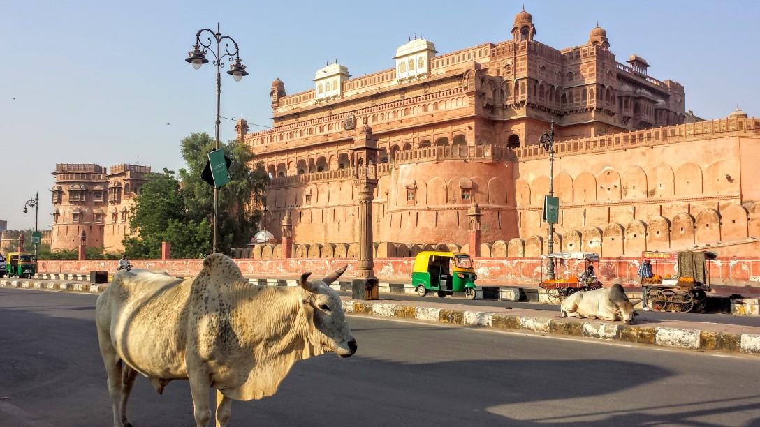 bikaner_fort_inde_rajasthan