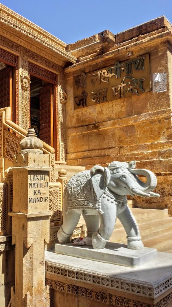 Nos amis les éléphants sont partout