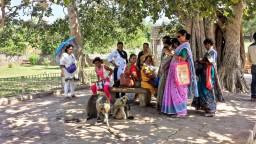 Notre bilan de 15 jours de voyage au Rajasthan : itinéraire et conseils