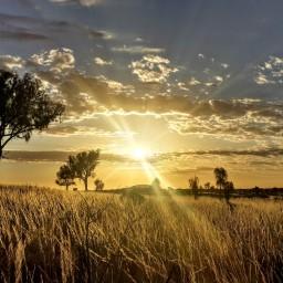 3 semaines de road trip au sud-est de l'Australie