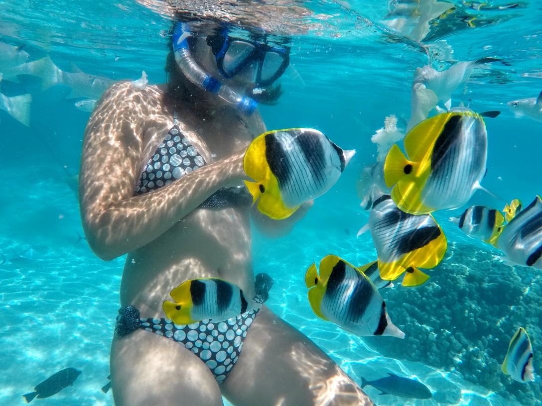 snorkeling_moorea